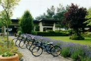 Leihräder auf dem Campingplatz